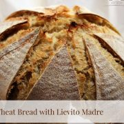 Dutch Oven Whole Wheat Bread with Lievito Madre