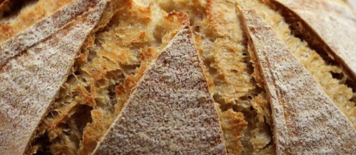 Dutch Oven Whole Wheat Bread with Lievito Madre